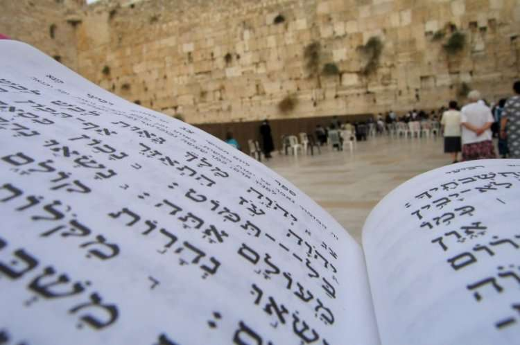 тегилим - псалмы