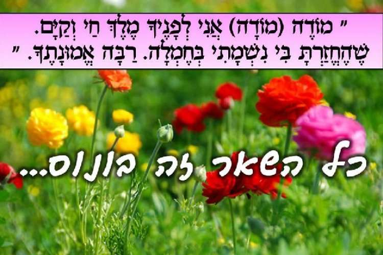 Предложения и фразы с мудростью иудаизма - видеть только хорошее