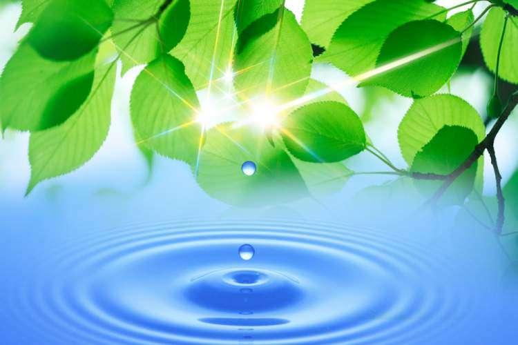 Сила воды в микве - Двар Тора от рава Замира Коэна на Холь а-Моэд Песах