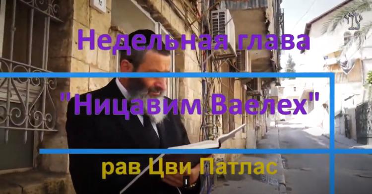 Рав Цви Патлас в комментарии к недельной главе Торы Ницавим Ваелех